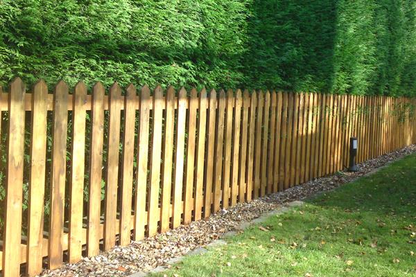 Domestic Fencing Sutton